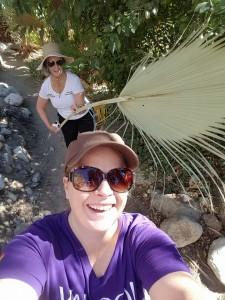 palm springs--I fan Amanda with palm leaf like Romans did